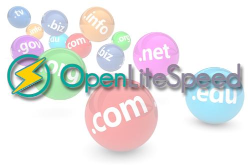 Cách thêm domain vào OpenLiteSpeed